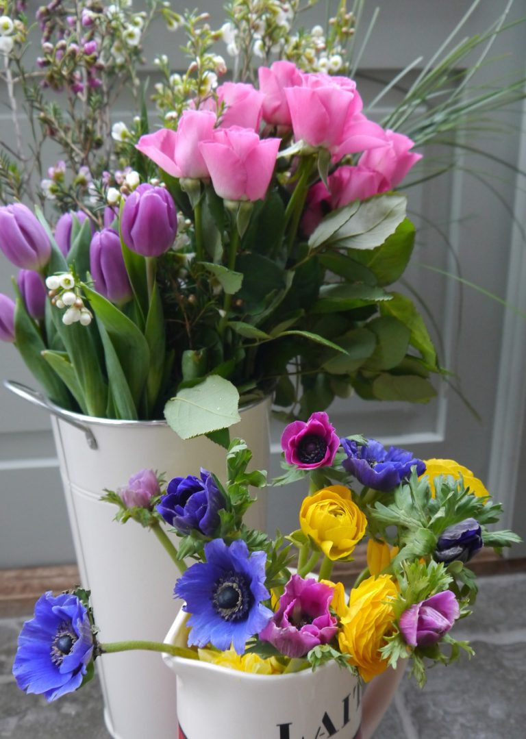 Florists buckets with fresh tulips in pinks and purple with brightly coloured anemones