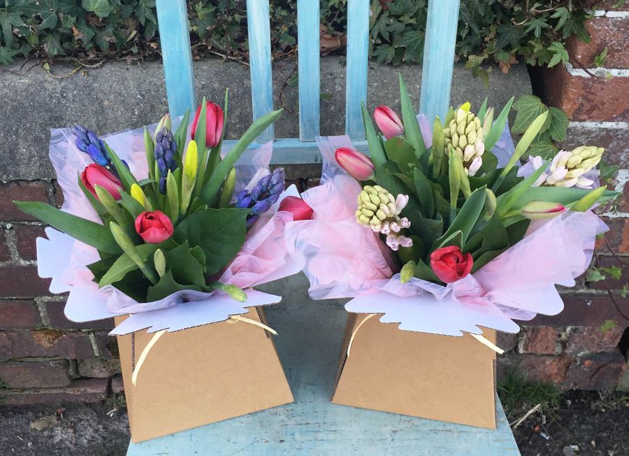 Two Spring favourite posies from Bedgebury Blooms with tulips, pink or blue hyacinths and daffodils